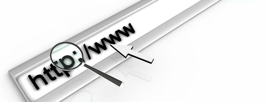 url 1 - Fraude e Internet - Cómo evitar las estafas en Internet